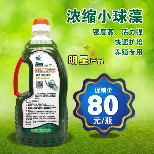 【绿宝卫士】高密度浓缩小球藻,肥水助手,天然活性饵料,溶氧供应者