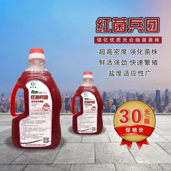 【红菌兵团】强化优质光合细菌菌株,超高密度,快速繁殖