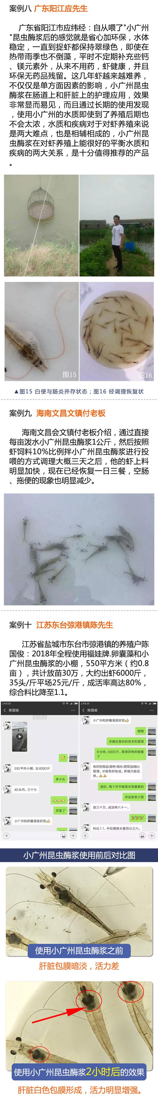 小广州昆虫酶案例05.jpg