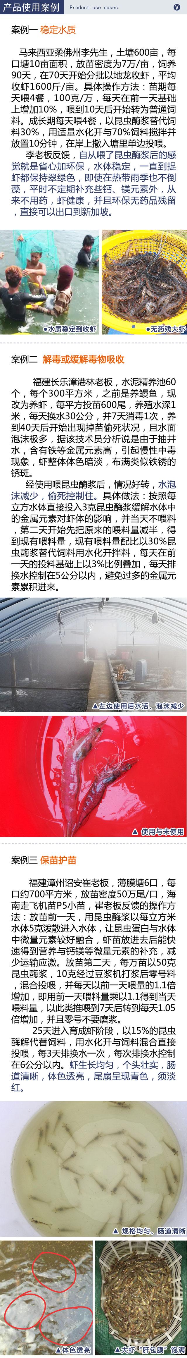 小广州昆虫酶案例03.jpg
