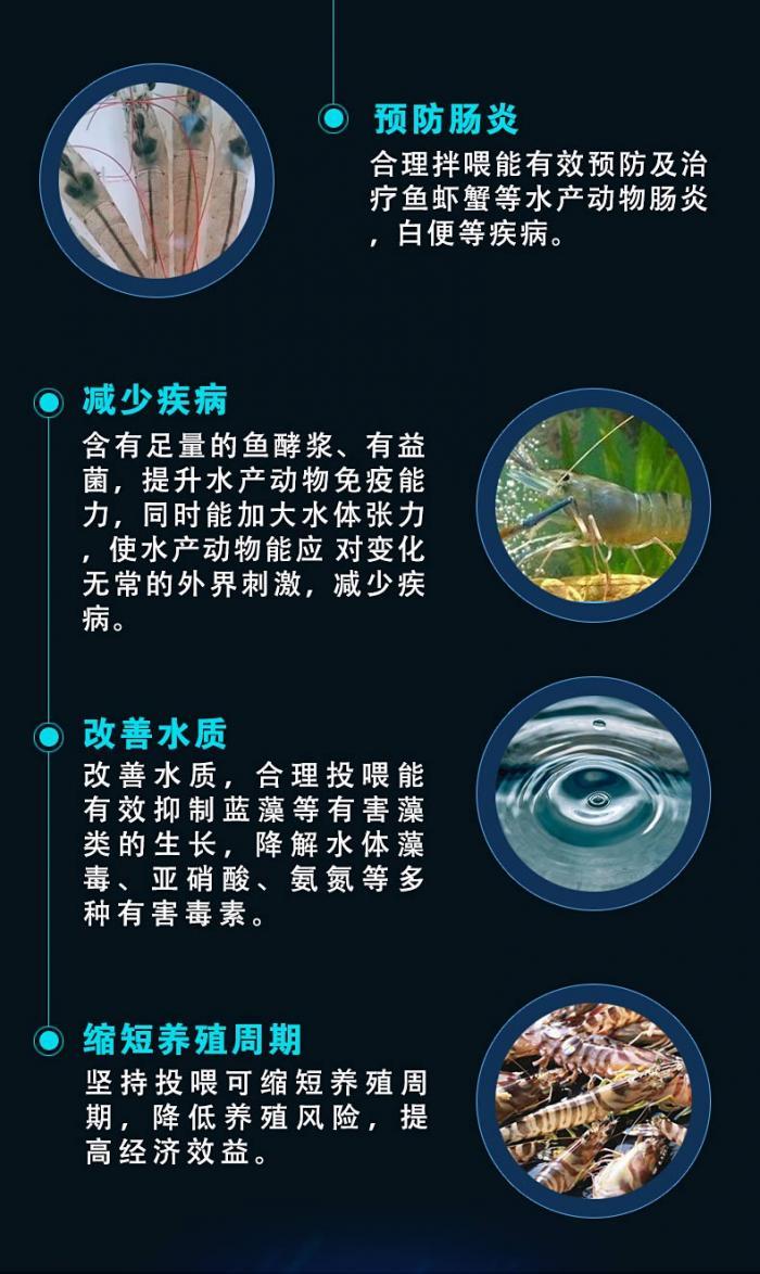 鱼酵香-详情页4.jpg