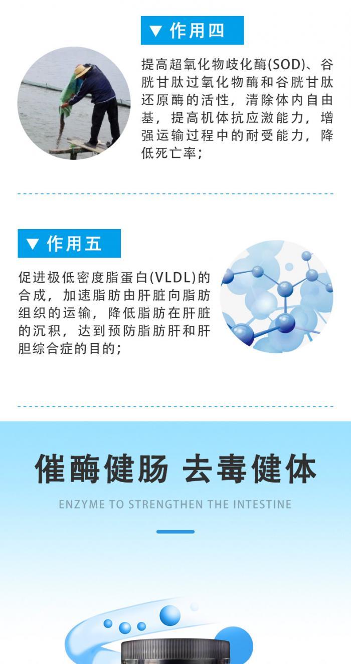 小黑瓶胆酶酸-详情页5.jpg